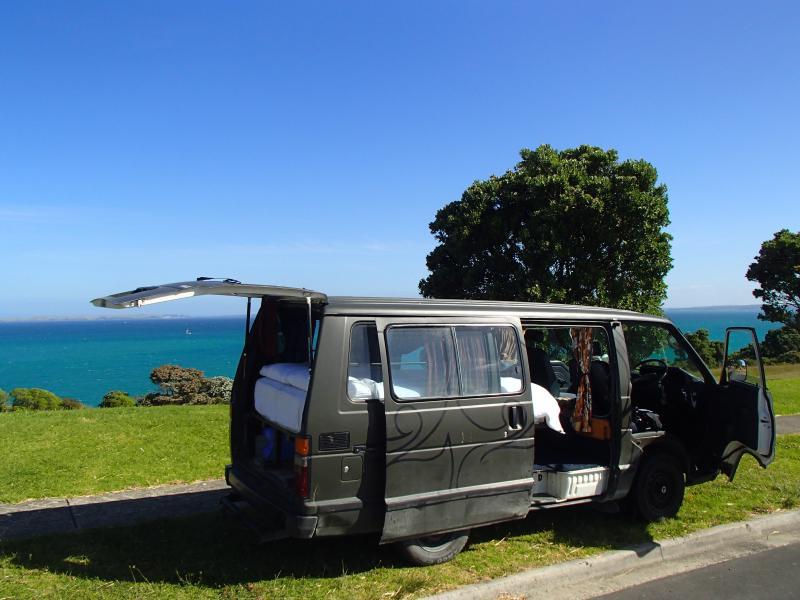 Rocky enjoying the views from North Auckland...