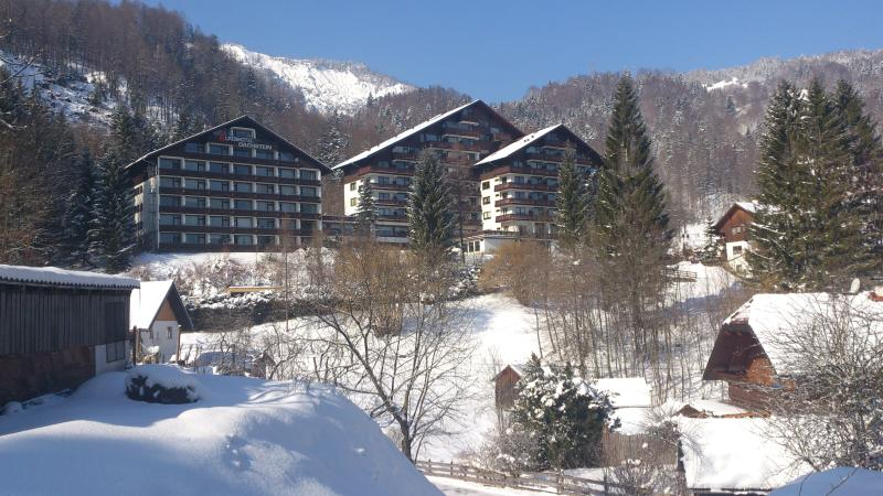 The hotel on a sunny snow day