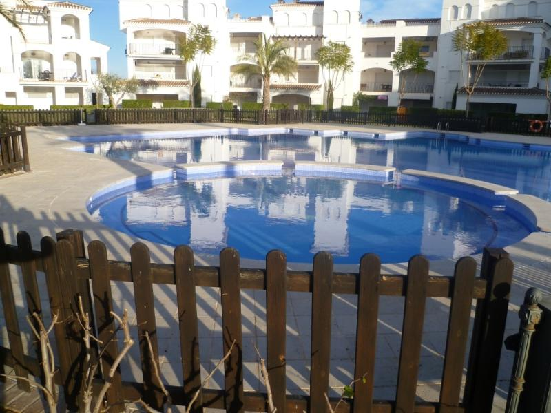 Large family friendly pool with Jacuzzi