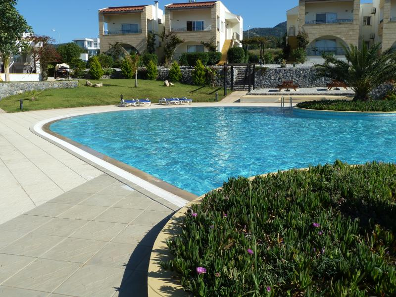 View of the pool and apartment in the background