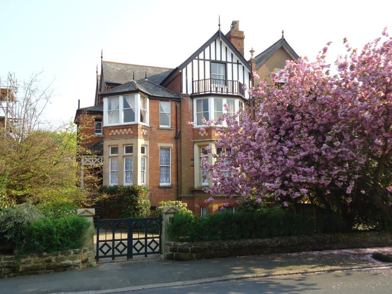 the house front in spring