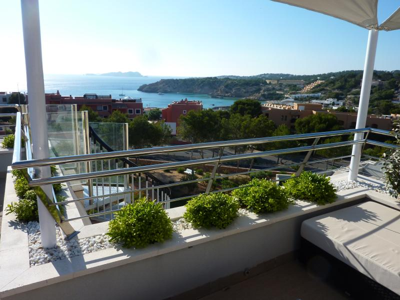Stunning views of the island of S'Espartar from the private solarium / roof terrace