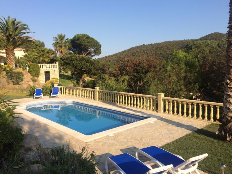 View from the pool, with plenty of space for relaxation
