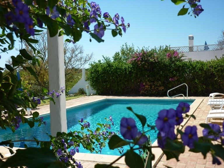 Large private swimming pool and garden