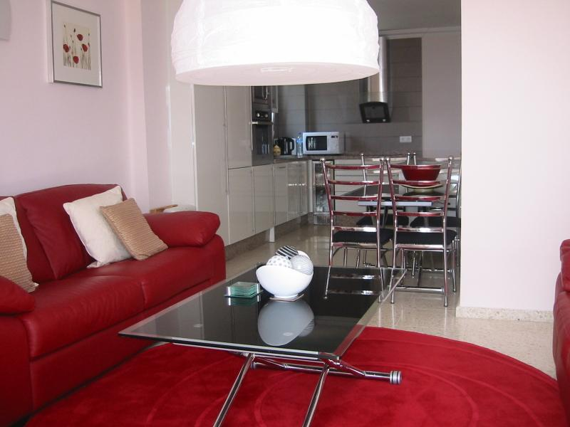 Stylish lounge, double and triple leather sofas,ultra modern kitchen