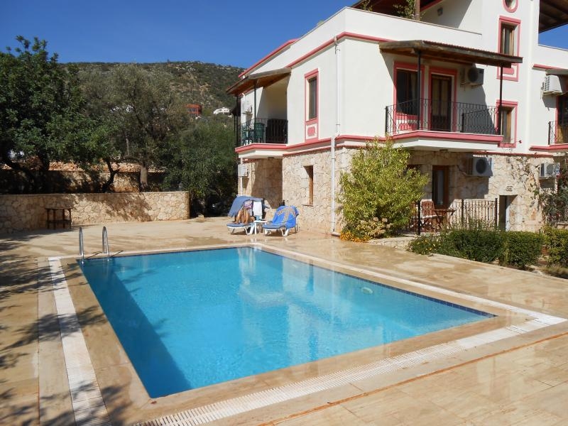 The beautiful pool , large terrace & gardens shared with four other apartments