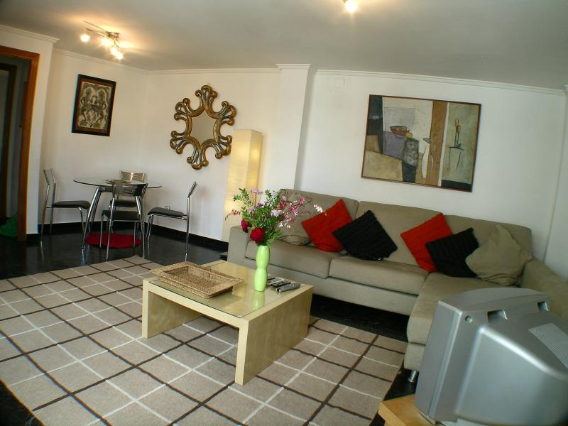 Deceptively spacious apprx 22m2 living/diner - full central heating & dual air-conditioning syst