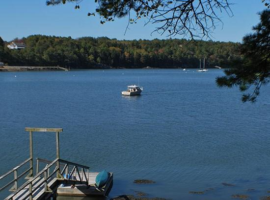 The Gulls Cottage has great water views with lobster boats and yachts passing by frequently