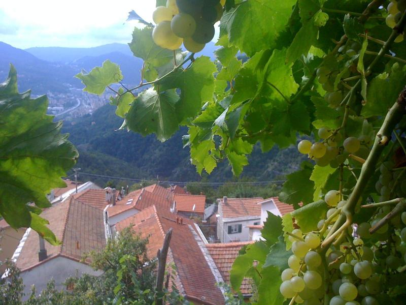 Only 20 km from the cultural metropolis and the beaches of the Italian Riviera: Casa Fabio