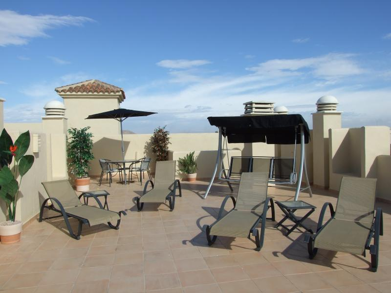 Very Large Roof Terrace
