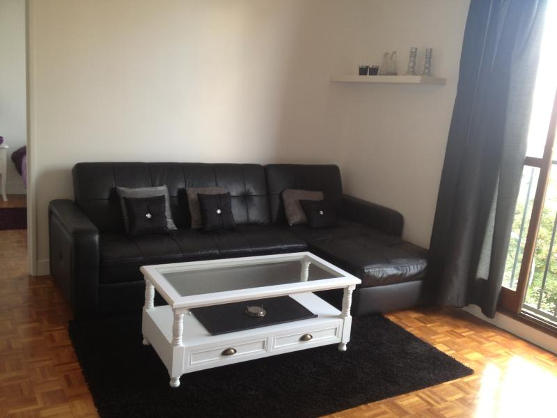 Lounge with sofa bed and coffee table