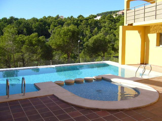 The beautiful pool over looking the Pine trees