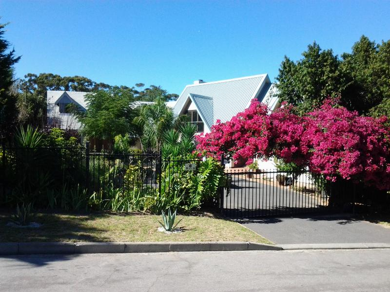 Bougainvillea covered entrance to the property