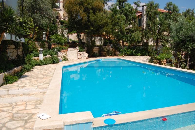 Villa Lycia and Patara Swimming Pool