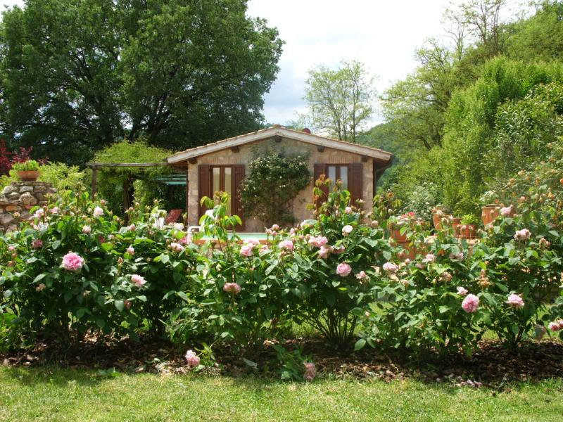 Casale Eredità guest house and english roses,  70 km far Rome 45' by train