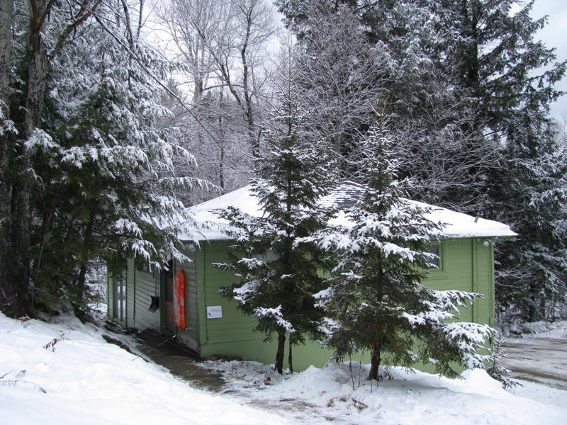 Willow Cottage en el bosque Lodge