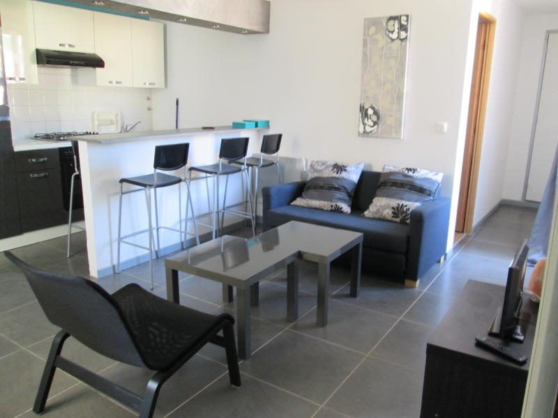 Furnished living room and fully equiped kitchen