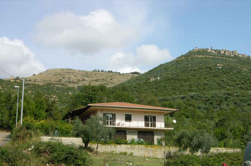 Villa Giannina with Town of Acuto on the hilltop