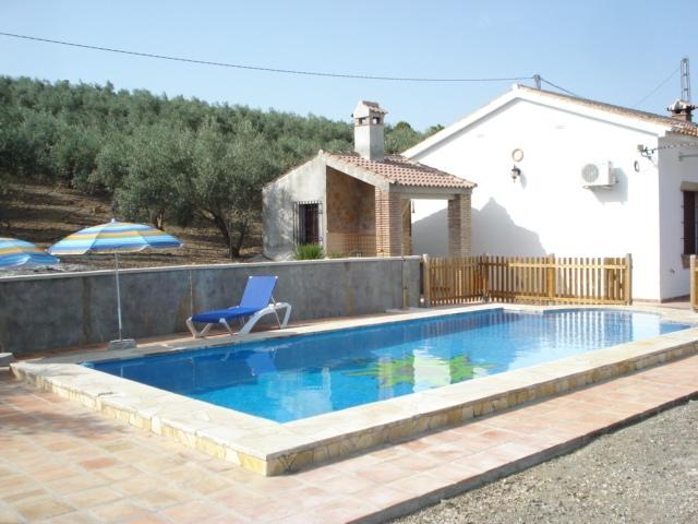 The private pool with outside bbq/kitchen/shower room