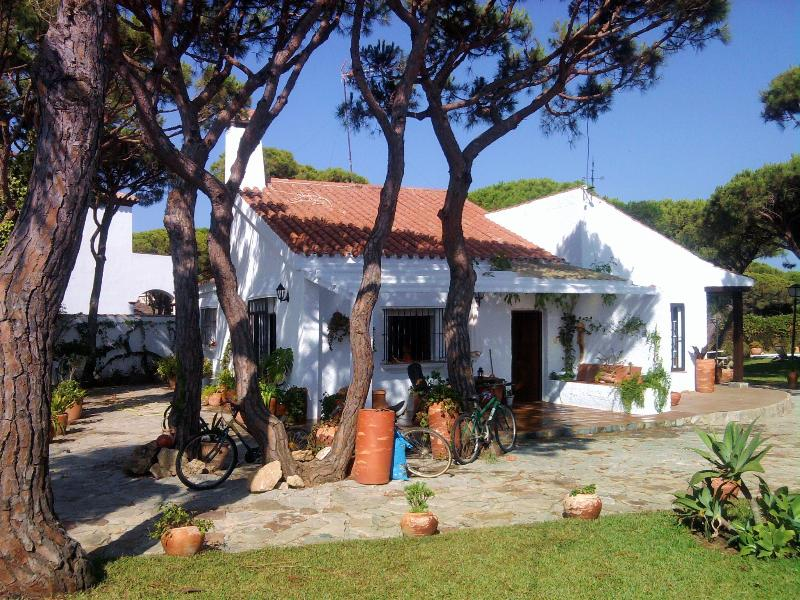 El Olivo. Tradition and modern confort In the middle of Natural park
