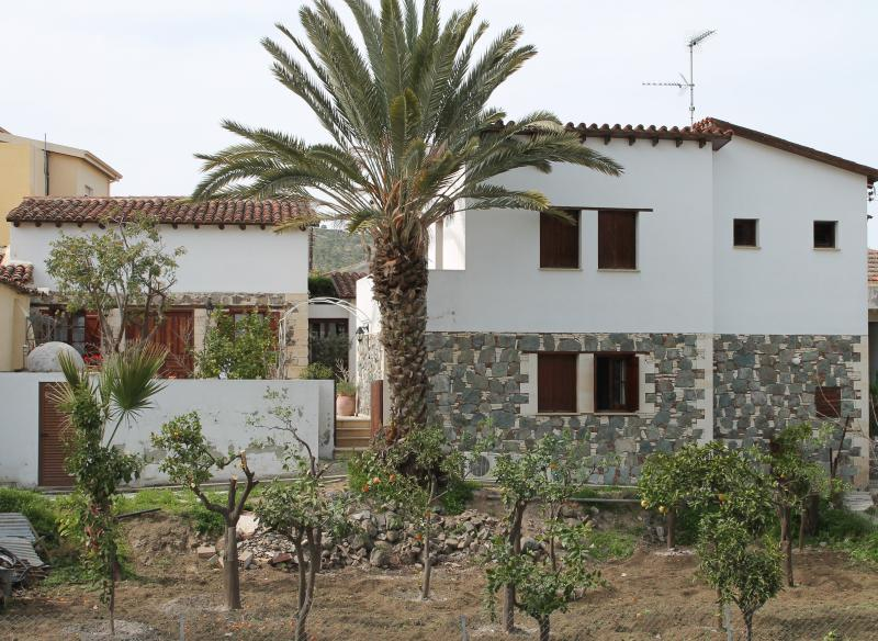 View of Elaia at the side with its citrus orchard freshly pruned here