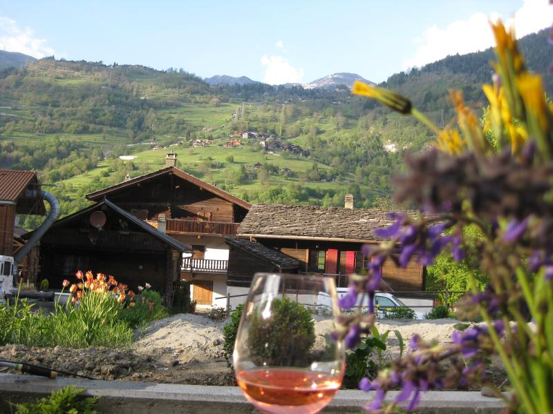 Summer view from the patio towards Verbier