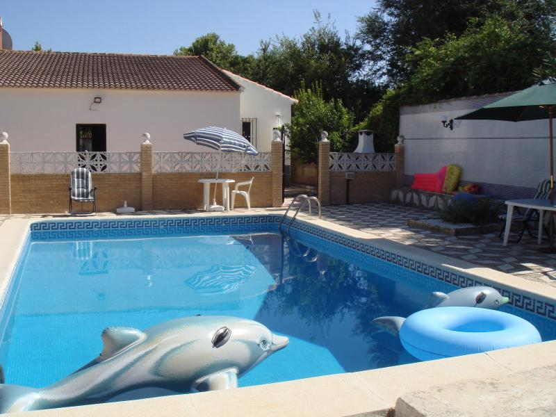 Secluded large pool with easy access to villa