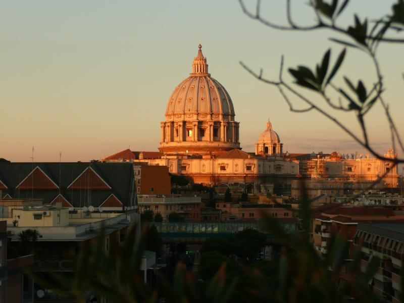 The dome of St. Peter's seen from the terrace (for privat use only)