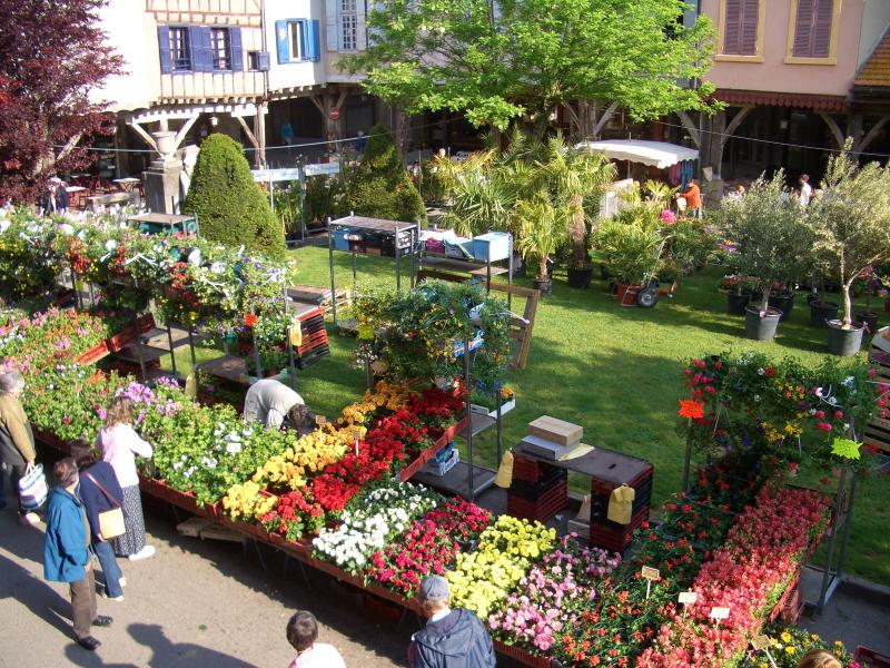 Colourful flower market of Mirepoix