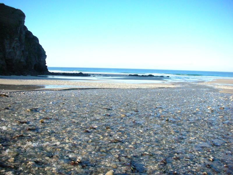 Beach on a bright winter's morning