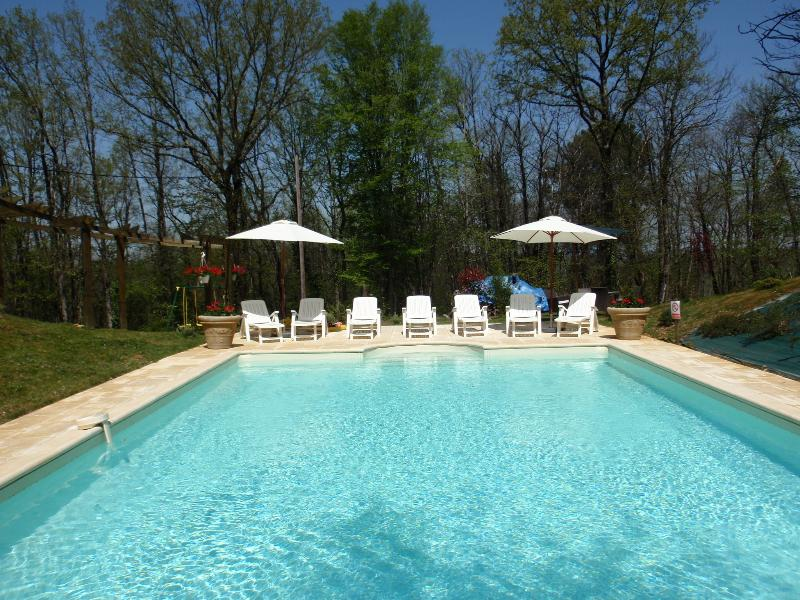 The 10m x 6 m pool - cool and inviting on a hot day!