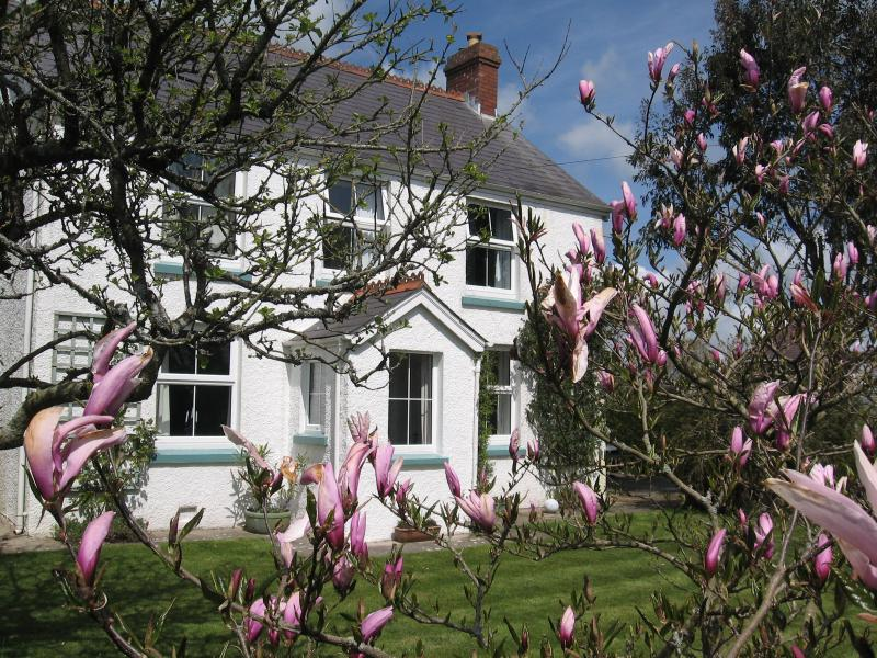 COTTAGE FROM THE GARDEN IN SPRINGTIME