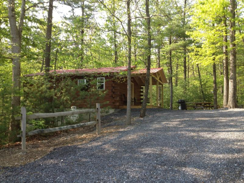 Raystown Country Log Cabin (cabine toit rouge)