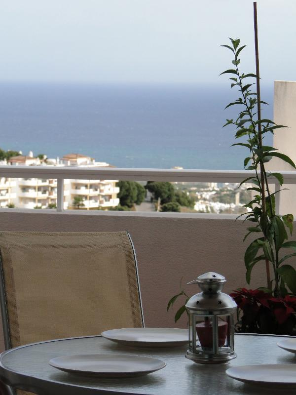 Terrace and View!