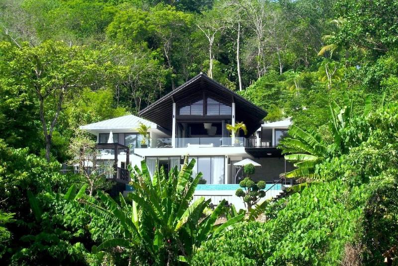 50 meters above the sea, in an amazing tropical forest.