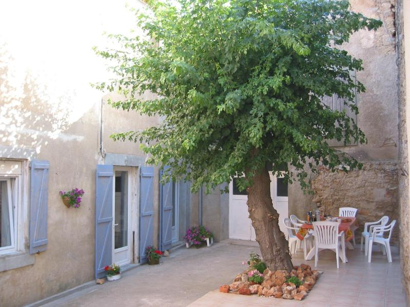 The sunny south facing terrace enjoys the welcome shade of the murier tree