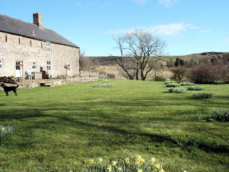 The back of the cottages Acorn, Hawthorn and The Byre.