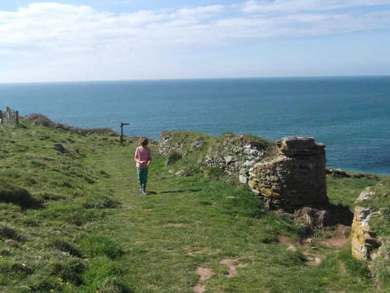 Terrific Coastal walks around Start Point