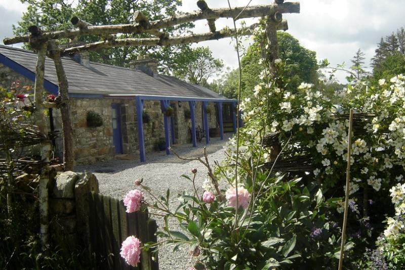 Blueberry Cottage and heavenly scented Kiftsgate Roses on the pergola.