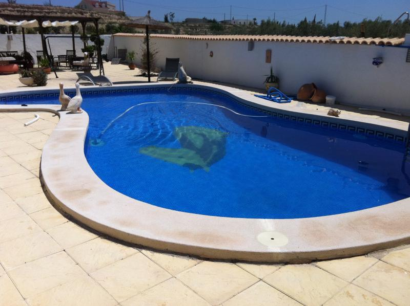 Private Swimming pool 10 meters with Private sunbathing area
