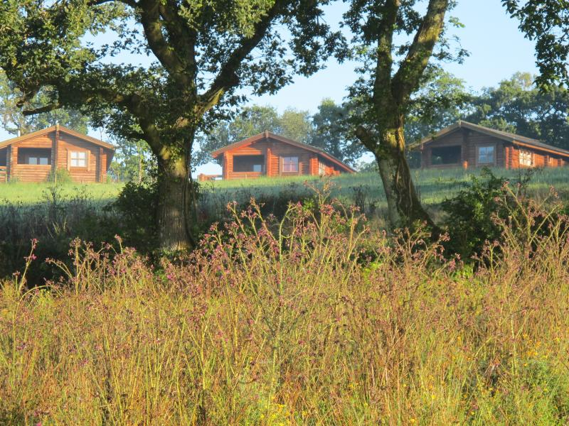 Three beautiful Lodges (or log cabins). Brambles is the one on the right hand side.