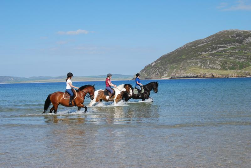 Escape from it All. Get you feet wet on horse back on Tullagh Beach