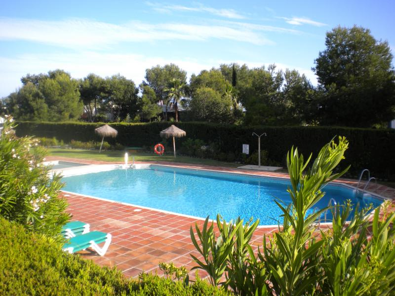 One of two pools as viewed from the terrace garden