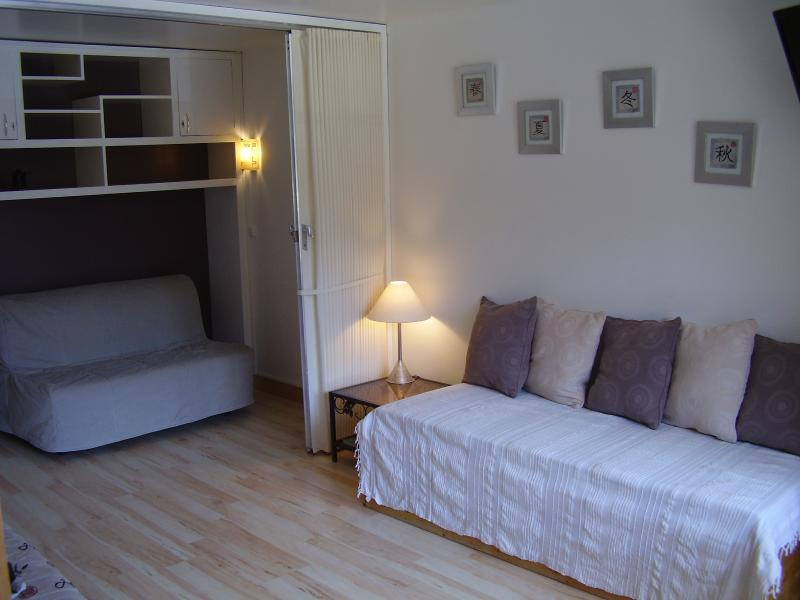 Studio living area showing double sofa bed on other side of partition 'wall'