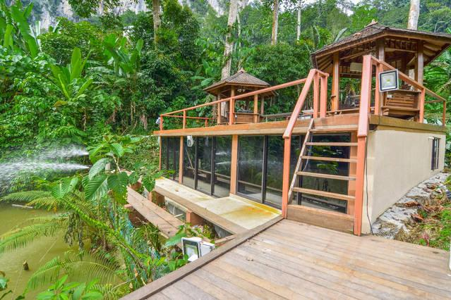 The fishing pavilion is shaded with huge forest trees, where plenty of fishes dwell.