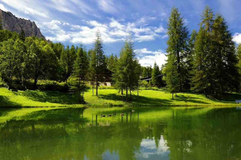 The chalet: a peaceful green spot in the earth of the Dolomites