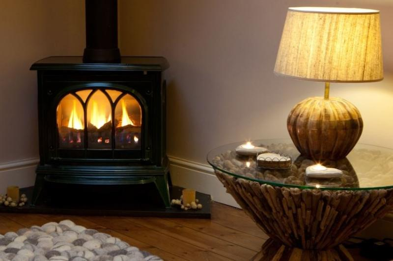 Cosy Gas Fire - perfect to cosy up too without the hassle