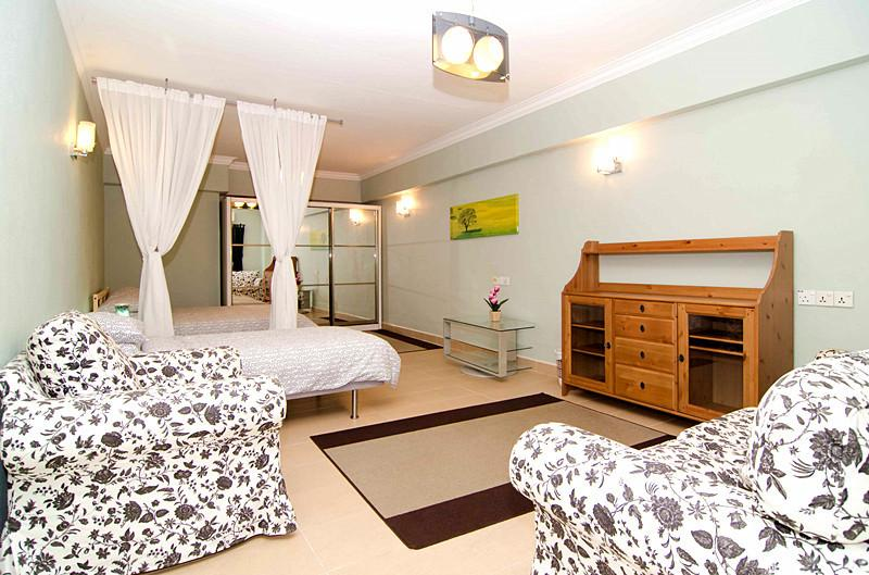 Cozy & spacious penthouse with sofas and built in wardrobe. Bathroom with bathtub attached.