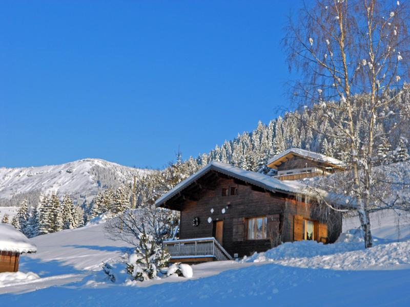 The chalet, in winter