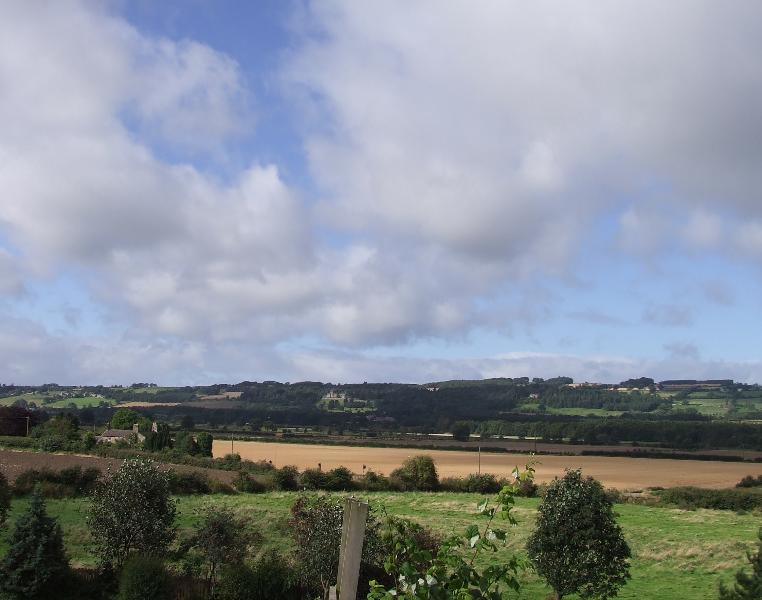 View from Dilston Cottage